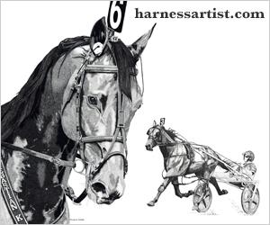 Harness Artist
